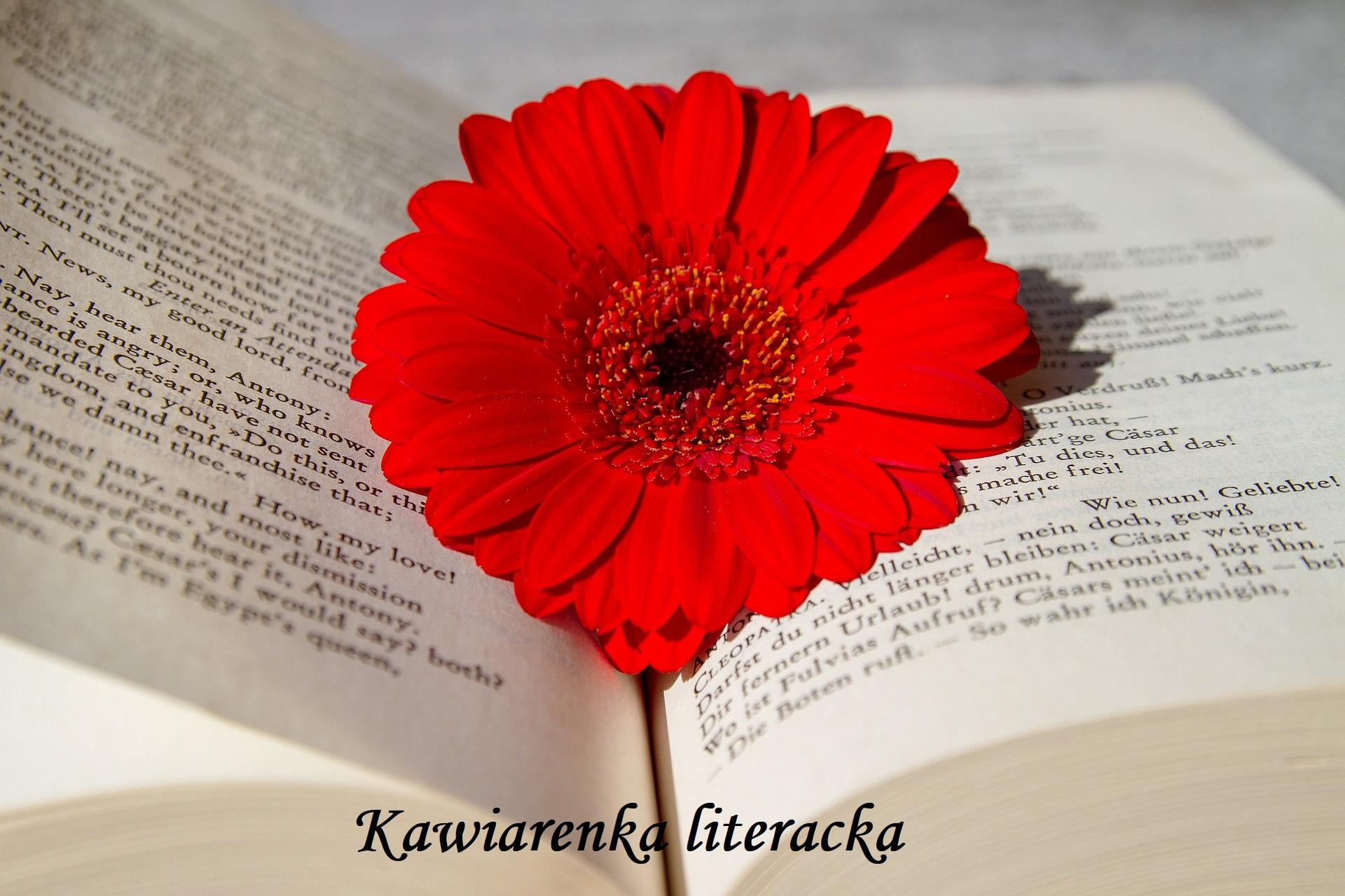 kawiarenka, literatura, kawiarenka literacka