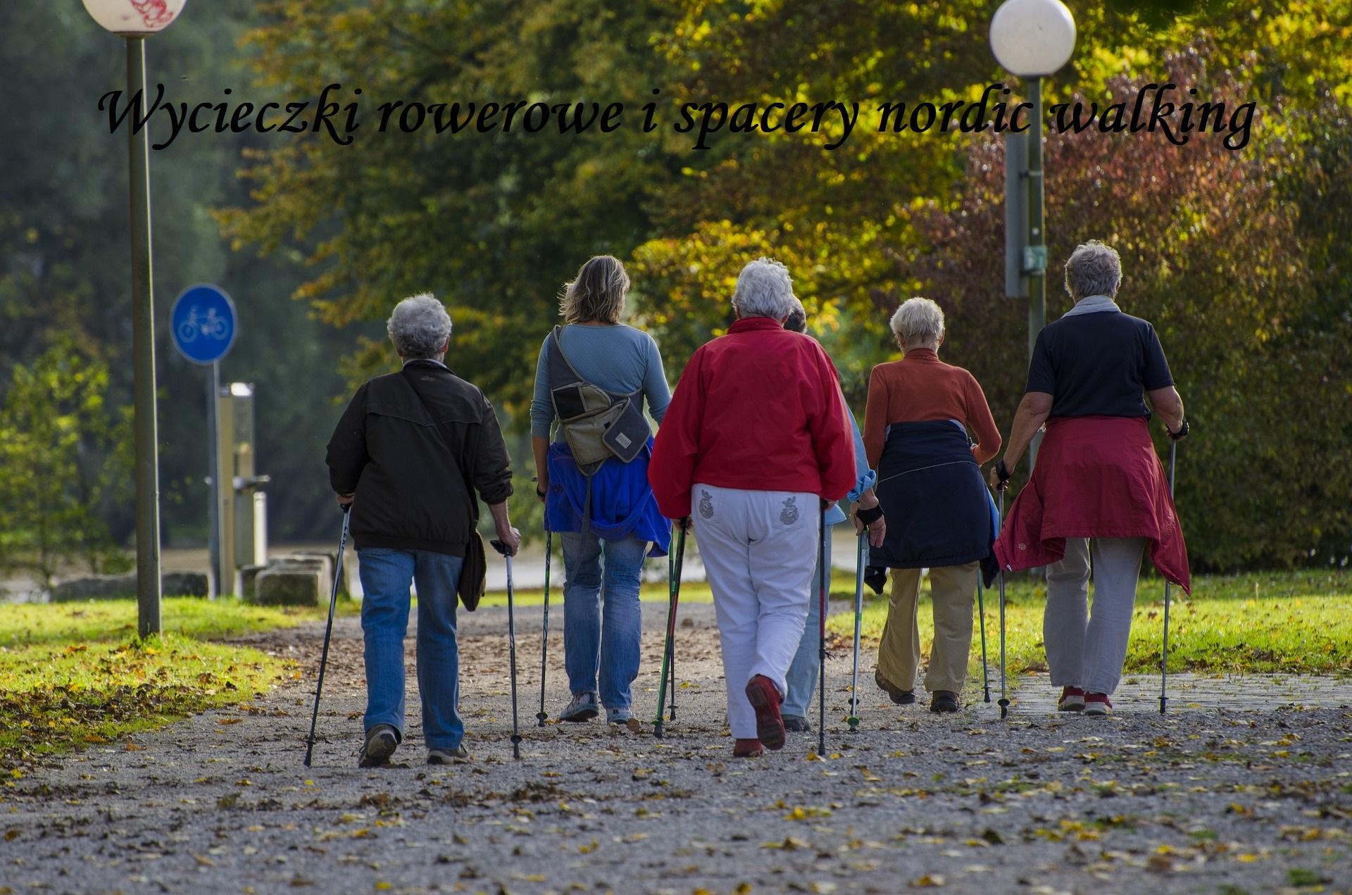 wycieczki, rower, nordic walking, wycieczki po Dąbrowie